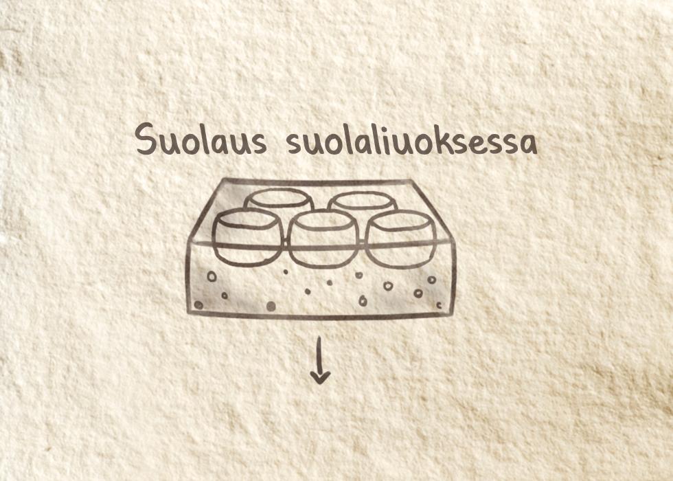 Juuston valmistus -  Suolaus suolaliuoksessa
